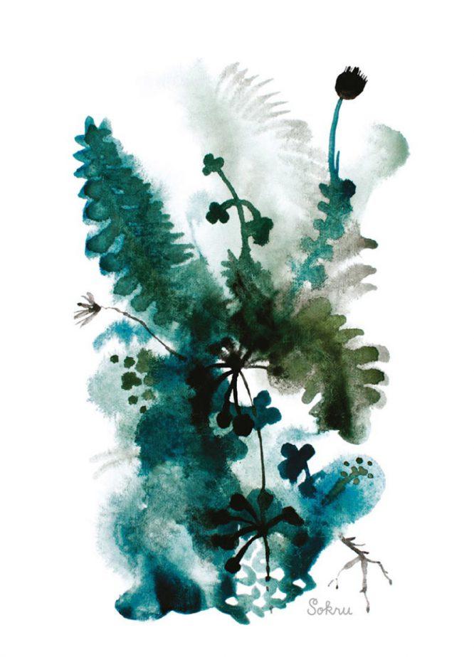Sokru • Metsän Vihreät