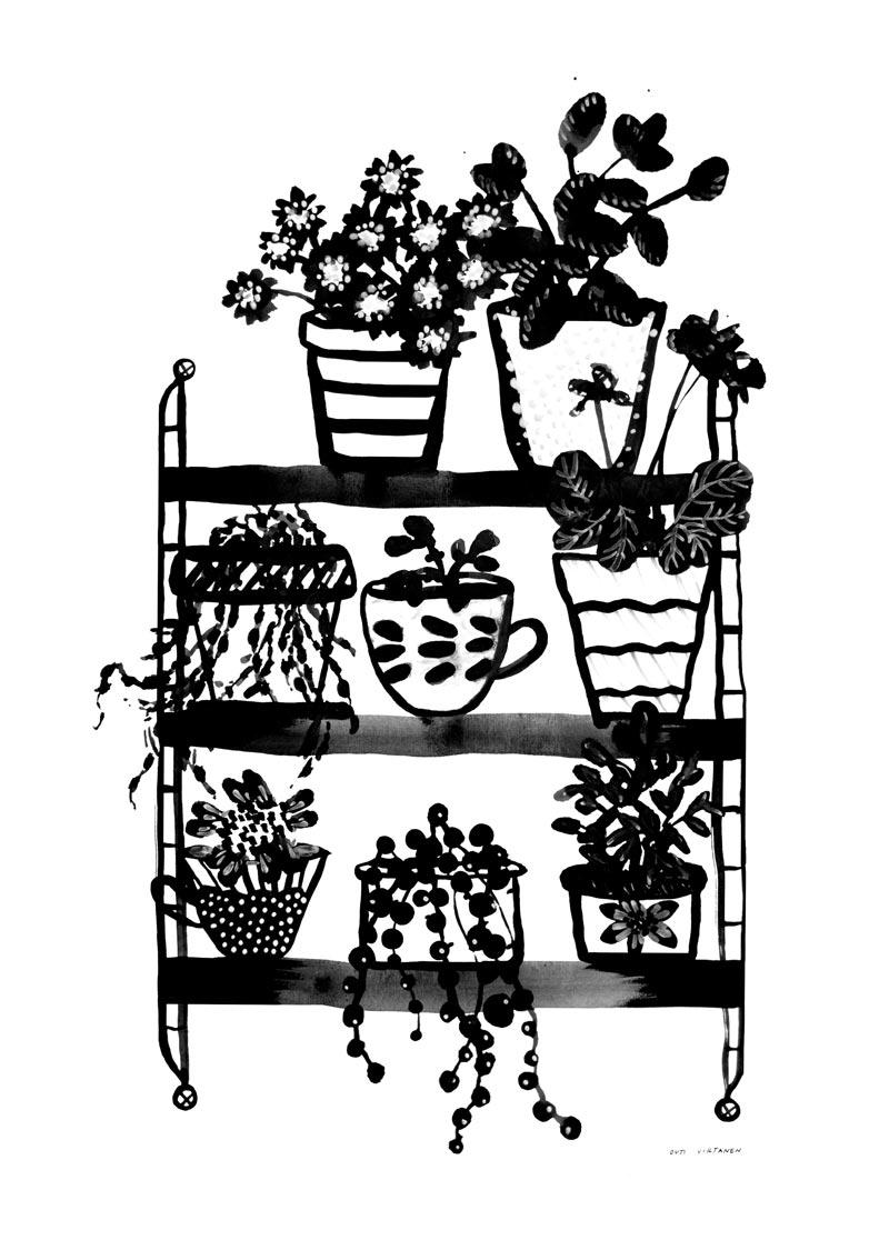 Sokru • Kukkahylly