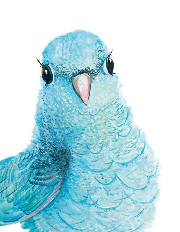 Sokru • Minty The Parrot