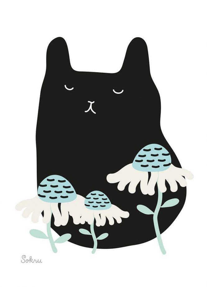 Sokru • Kissa