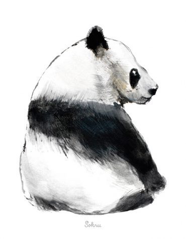 Sokru • Panda