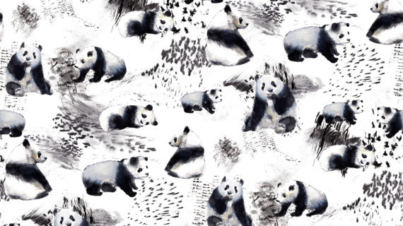 Ainola – Pandat