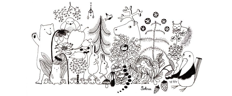 Sokru • Metsän Eläimet