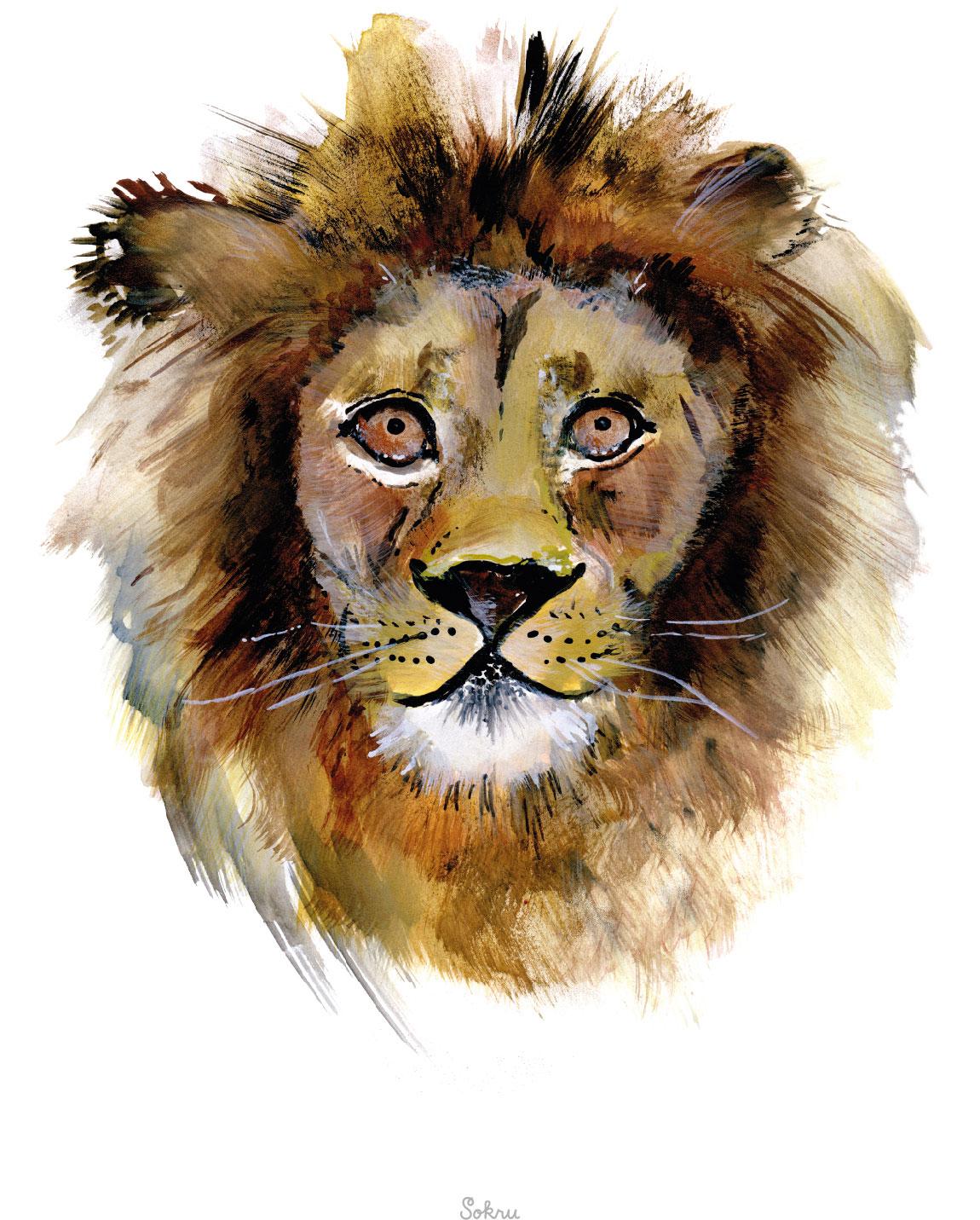Sokru • Leo